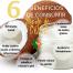 6 Beneficios de consumir Aceite de Coco