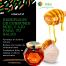 Beneficios de consumir miel y ajo para tu salud.